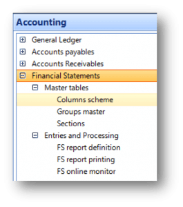 financial_statements_in_erpwizard1
