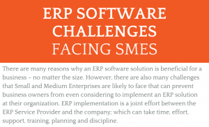 erp_software_challenges_facing_smes-copy
