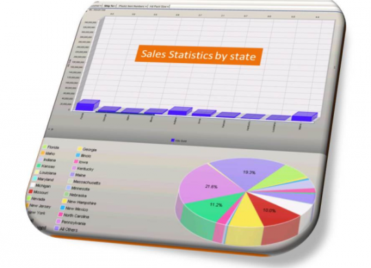 erp_wizard_business_intelligence_dashboard