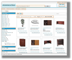 erp_wizard_e_commerce_business_software1-resized-251