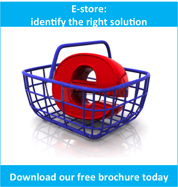 image1 - E-store: identify the right solution - Namtek Consulting Services