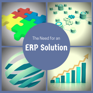 need-for-ERP